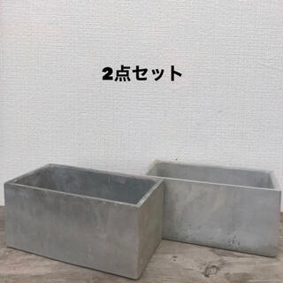 オシャレ セメント鉢2点セット(その他)