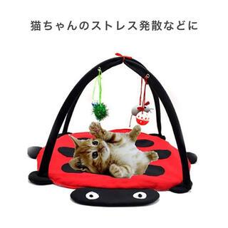 猫のおもちゃ キャットマット キャット おもちゃ テントウムシデザイン かわいい(猫)