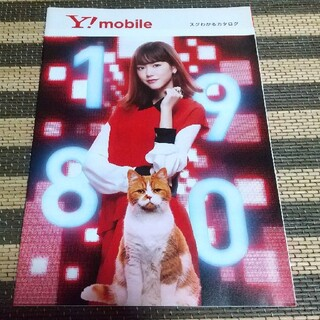 レア Ymobile 非売品カタログ(専門誌)