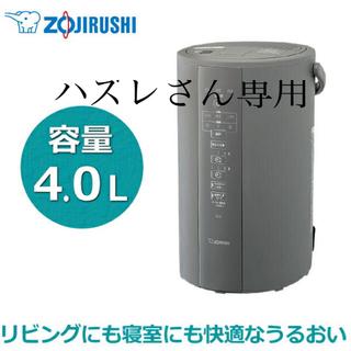 ゾウジルシ(象印)の象印 スチーム式加湿器 容量4L EE-DC50-HA グレー(加湿器/除湿機)