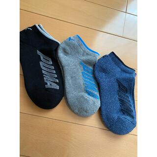 プーマ(PUMA)の子供用 靴下3足セット 新品未使用 タグなし PUMA プーマ(靴下/タイツ)