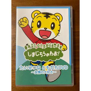 ガッケン(学研)のしまじろう DVD(キッズ/ファミリー)