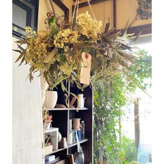 〜アンティークグリーンの秋の草花〜フライングリース○ドライフラワーリース(リース)
