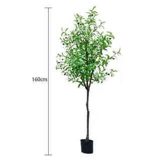 人工観葉植物 フェイクグリーン 160cm オリーブ 実付き 造花 造木(その他)