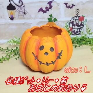 【パンプキンポットL:オレンジ】植木鉢 プランター 多肉植物 プレステラ プラ鉢(プランター)