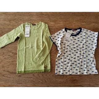 スタジオミニ(STUDIO MINI)のstudio mini スタジオ ミニ 薄手カットソー、半袖 tシャツ(Tシャツ/カットソー)