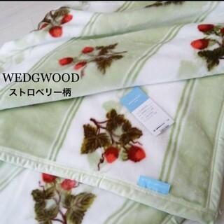 WEDGWOOD - WEDGWOOD 未使用 毛布 ストロベリー柄