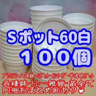 Sポット60 白 100個 2号 丸型 スリット鉢 プレステラ 多肉植物 プラ鉢(プランター)