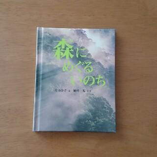 フェリシモ(FELISSIMO)の森にめぐるいのち(絵本/児童書)