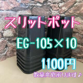 ◎10個◎ロング スリットポット EG-105L slitpot プラ鉢(プランター)