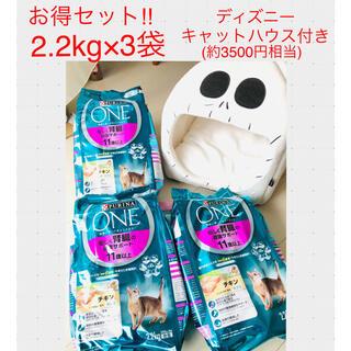 ネスレ(Nestle)のお値下げ 未使用 ピュリナワン猫 腎臓の健康2.2kg3袋 ディズニーハウス付き(ペットフード)