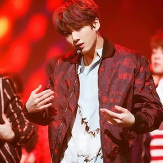 ディオールオム(DIOR HOMME)の【BTSグク着用】Dior homme 17ss ブルゾン(ブルゾン)