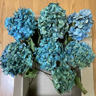 【めぐ様専用】アジサイドライフラワー 青〜青緑〜紫系 7(ドライフラワー)