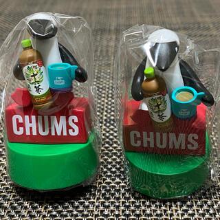 チャムス(CHUMS)の◆◆◆ チャムス 十六茶 ペットボトル キャップ 非売品(ノベルティグッズ)