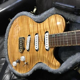ギブソン(Gibson)のDavid Thomas McNaught  VSC3S ハカランダ(エレキギター)