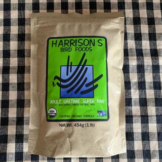 ハリソン バードフード極小粒 40g アダルト ライフタイム スーパーてファイン