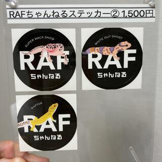 第二弾!RAFちゃんねるステッカー(レオパ・ニシアフ)(ステッカー(シール))