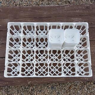 プレステラ90 白 48個+システムトレー24穴×2個(プランター)