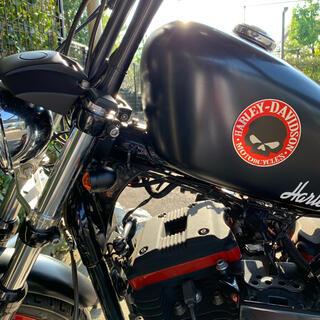 Harley Davidson - Harley-Davidson XL883R フルカスタム 2006年式 美車