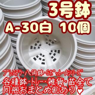プラ鉢3号鉢【A-30】10個 スリット鉢 丸 プレステラ 多肉植物(プランター)