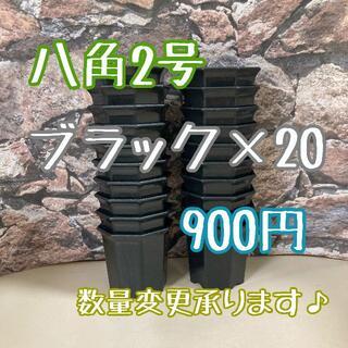 八角鉢 ◎20個◎  ブラック 2号 2寸 プラ鉢 ミニ鉢 (プランター)