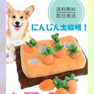 アイオペ(IOPE)の人気♪犬玩具★にんじん収穫★ノーズワーク★おやつ隠し★愛犬コミュニケーション♡(犬)
