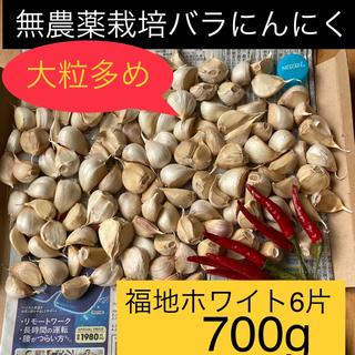無農薬栽培バラにんにく【700g】福地ホワイト6片(野菜)