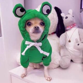 犬服 ⭐防寒着⭐暖かいカエル⭐犬服冬⭐年賀状撮影やSNSに(犬)
