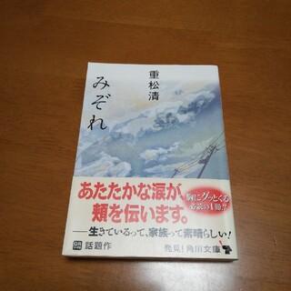 みぞれ(文学/小説)
