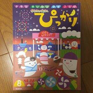 ガッケン(学研)のぴっかり 8月(絵本/児童書)