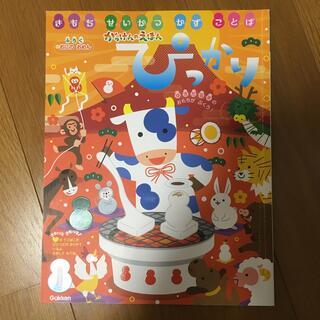 ガッケン(学研)のぴっかり 1月(絵本/児童書)