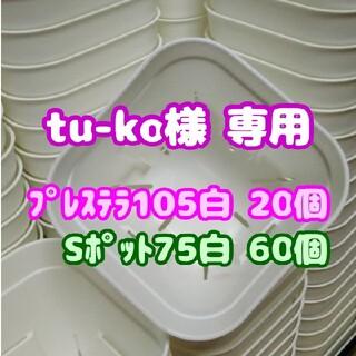【スリット鉢】プレステラ105白20個 他 多肉植物 プラ鉢(プランター)