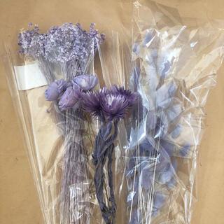 紫 パープル ドライフラワー 花材(ドライフラワー)