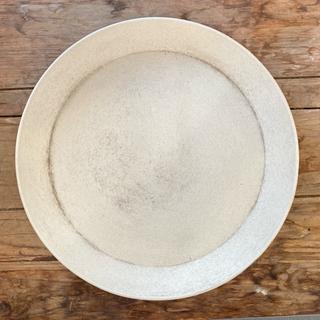 合成樹脂製 受け皿 ホワイト 直径23.3cm(プランター)