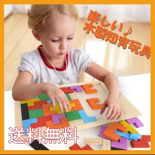 木製知育玩具 カラフル バラエティー ボックス パズル テトリス ブロック 木製(知育玩具)