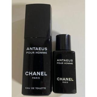 CHANEL - 2本セット シャネル アンテウス