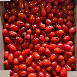 あんこ様専用ページ 同梱ページ(野菜)