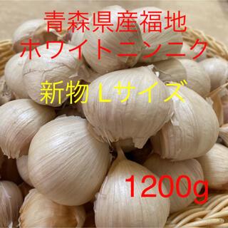 新物 青森県産福地ホワイトニンニク Lサイズ1200g (野菜)