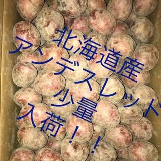 1点のみ 北海道産 男爵Mサイズ5kg アンデスレッドSサイズ5kg(野菜)
