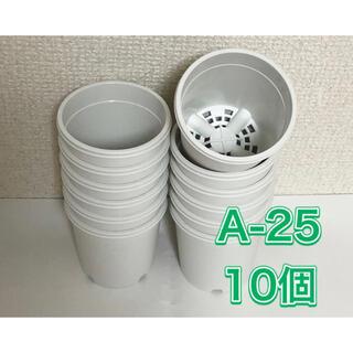 《A-25》10個 白 2.5号 丸型 スリット鉢 プラ鉢 多肉植物 生産者(プランター)