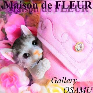 Maison de FLEUR - メゾンドフルールタオルハンカチ 新品未使用