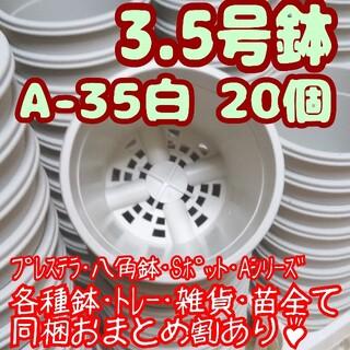 プラ鉢3.5号鉢【A-35】20個 スリット鉢 丸 プレステラ 多肉植物(プランター)