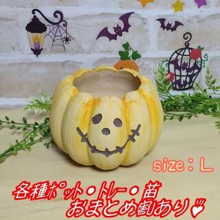 【パンプキンポットL:イエロー】植木鉢 プランター 多肉植物 プレステラ プラ鉢(プランター)