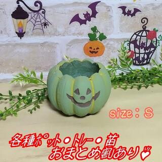 【パンプキンポットS:グリーン】植木鉢 プランター 多肉植物 プレステラ プラ鉢(プランター)