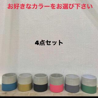 可愛い ラインカラー セメント鉢4点セット 組み合わせ自由(プランター)