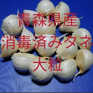 meme様★専用です❣(野菜)