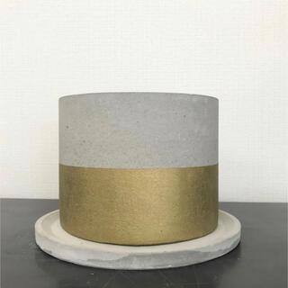 オシャレセメント鉢ゴールドライン 受け皿付き(プランター)