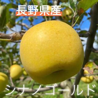 長野県産林檎☆シナノゴールド訳あり5キロ(フルーツ)