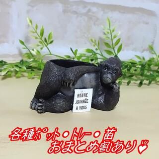 【ミニレジンポット:ゴリラ】植木鉢 多肉植物 寄せ植え プラ鉢 プレステラ(プランター)