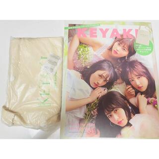 ケヤキザカフォーティーシックス(欅坂46(けやき坂46))のKEYAKI 2018 SummerツアーメモリアルBOOK(アート/エンタメ)